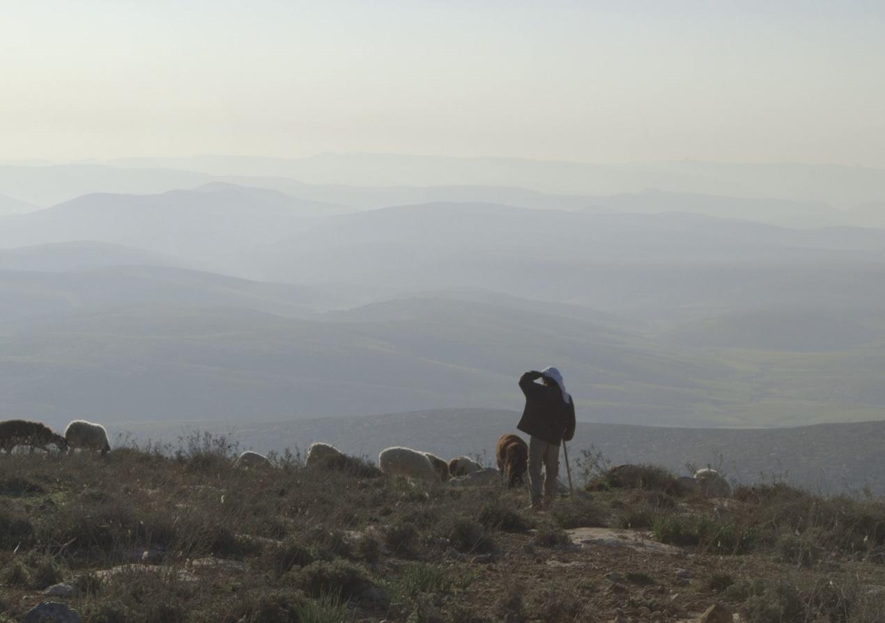 במדבר - דיפטיך תיעודי